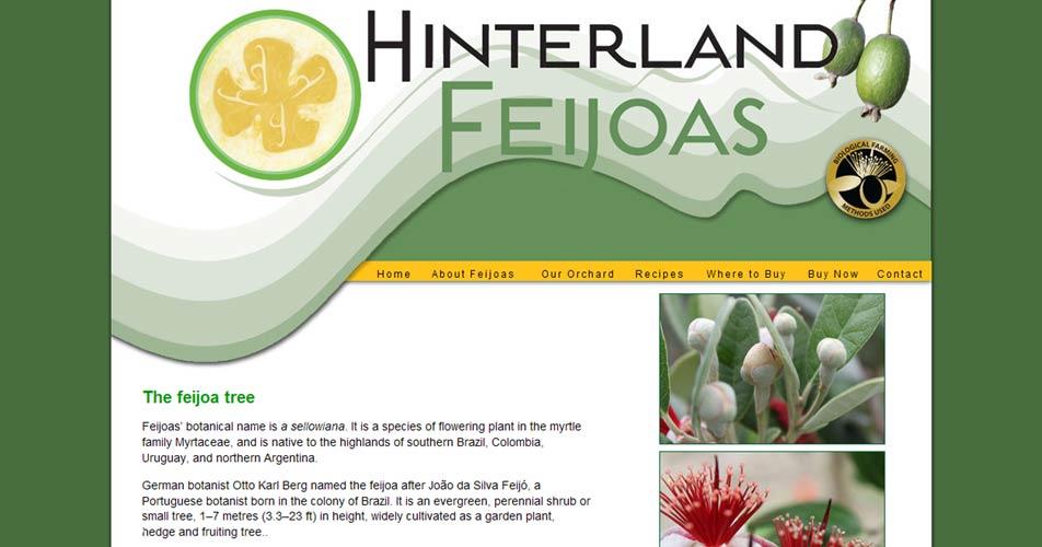 Sunshine Coast Hinterland Feijoas